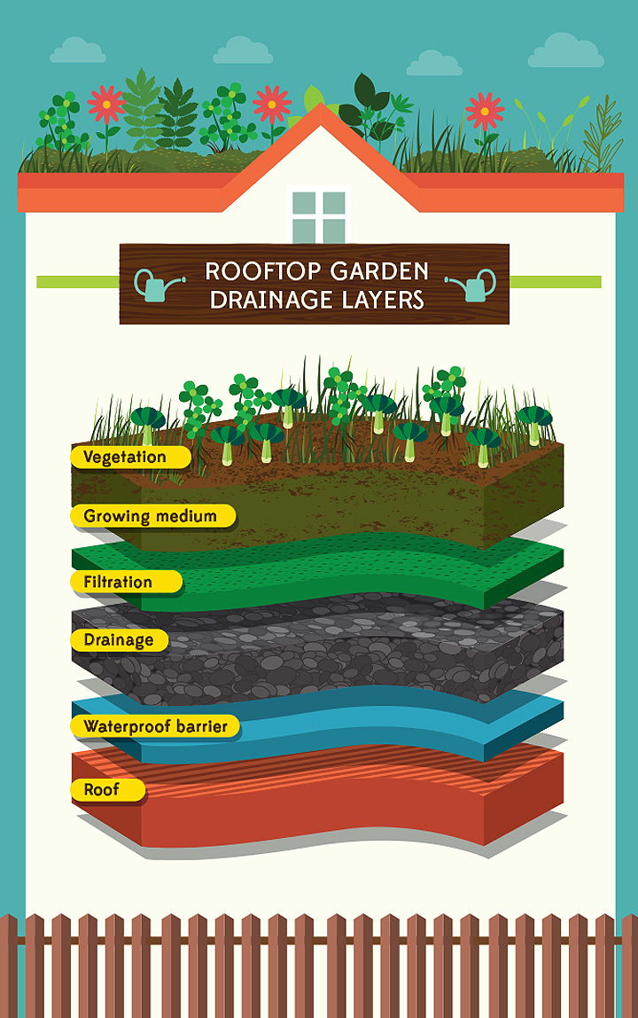 rooftop-garden drainage infographic