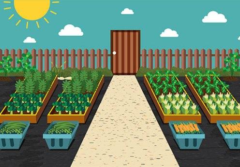rooftop-garden-header