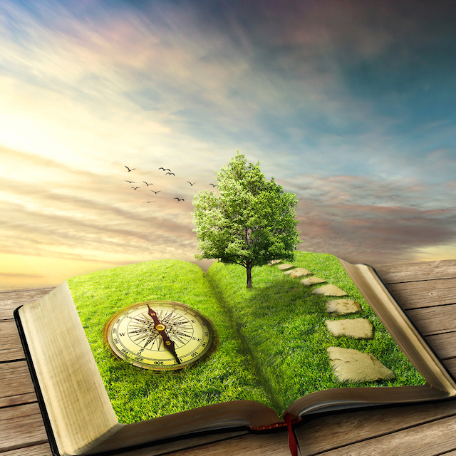 finding direction, compass, tree in book