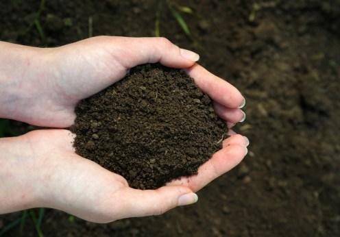 soil testing for a better spring garden