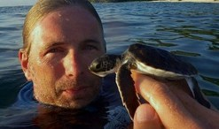 wallace J. nichols has a blue mind and loves sea turtles