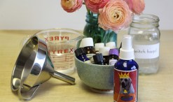 green divas DIY video: pre-poo spray image