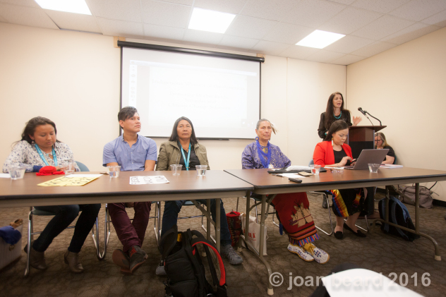 WECAN indigenous women's panel at UN May 2016