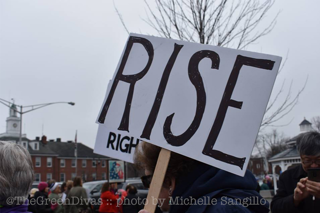 photo image by michelle sangillo from the women's march sister march in pompton plains nj for the green divas