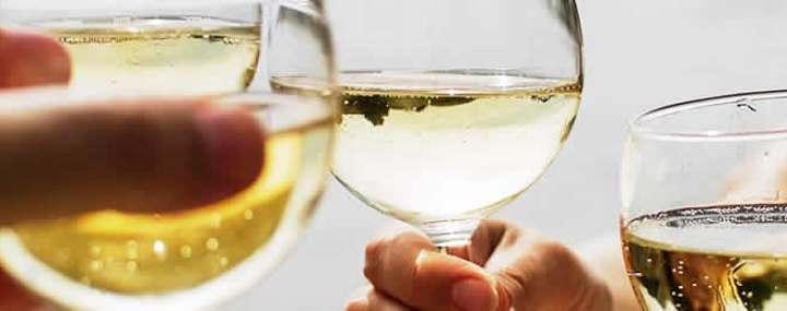Wine Guide * Red  * White  * Blush