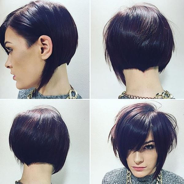 Multilevel Bob with a Fringe23