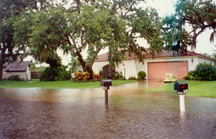Sarasota_-_My_Home_after_8_Inches_of_Rain_(1995)