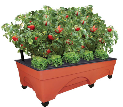 EMSCO Group Big City Picker Raised Bed Grow Box