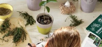 Herbal Academy Materia Medica Journal