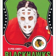 Tony Esposito's Goalie Mask