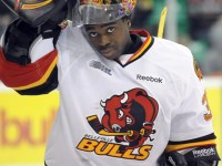 Malcolm Subban is going to be one of the best returning goaltenders in the OHL in 2012-13.  (Aaron Bell/OHL Images)
