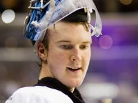 Dubnyk (Flickr/Bridgetds)