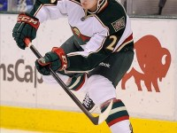 Jonas Brodin (Jerome Miron-USA TODAY Sports)