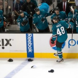 Tomas Hertl Celebrates (Ed Szczepanski-USA TODAY Sports)