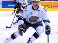 Hershey Bears versus Binghamton Senators. (Annie Erling Gofus/The Hockey Writers)