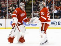 Jonas Gustavsson has shown no ill effects since returning from an injury that kept him out of the Red Wings' lineup since November. (Rick Osentoski-USA TODAY Sports)