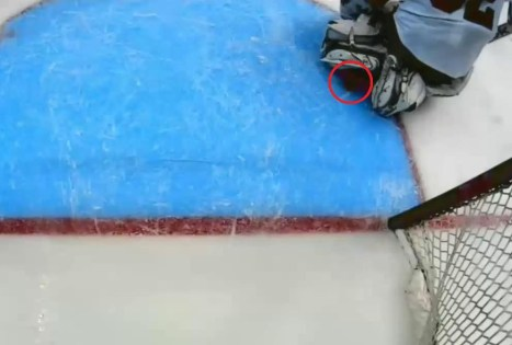 Kings controversial goal