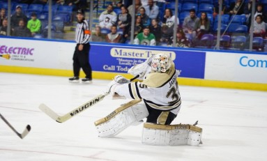 Tristan Jarry Clouds Pittsburgh's Fleury/Murray Debate