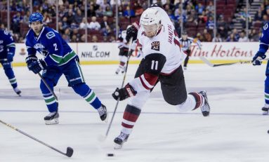 What Should the Arizona Coyotes Do with Martin Hanzal?