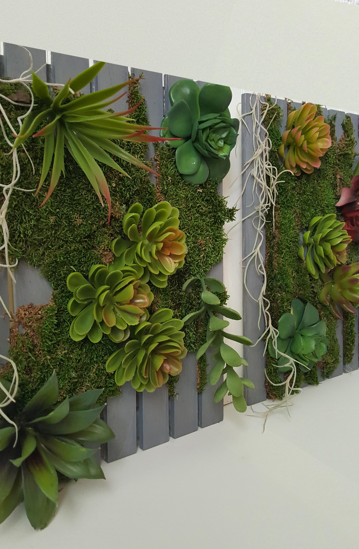 Fullsize Of Succulent Hanging Garden
