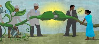 PC: together-to-grow-clean-energy-in-india