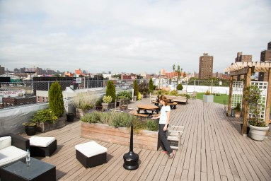 Roof garden in Clock Tower