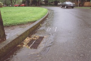 Roadside Stormwater Drain