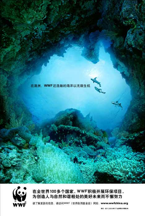 Dolphins and reef in WWF China print ad