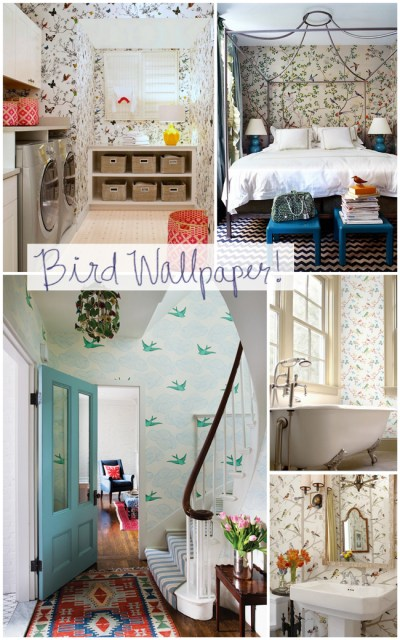 Bird Wallpaper {Put a Bird on It for Spring!} - The Inspired Room