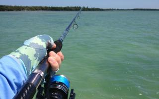 Shimano Sustain 10000 FG Review Capt. Ross Gallagher