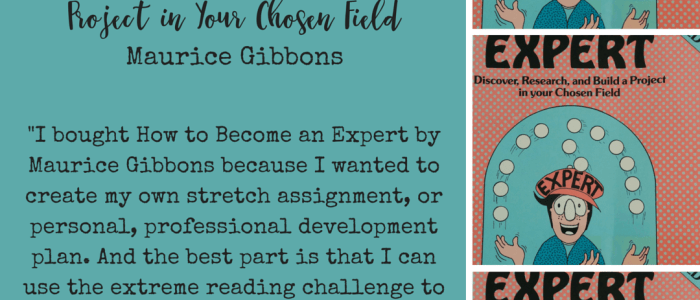 How to Become an Expert by Maurice Gibbons