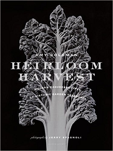 Heirloom-Heritage