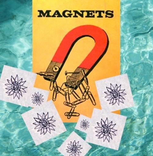 Magnets-Jade-Dressler