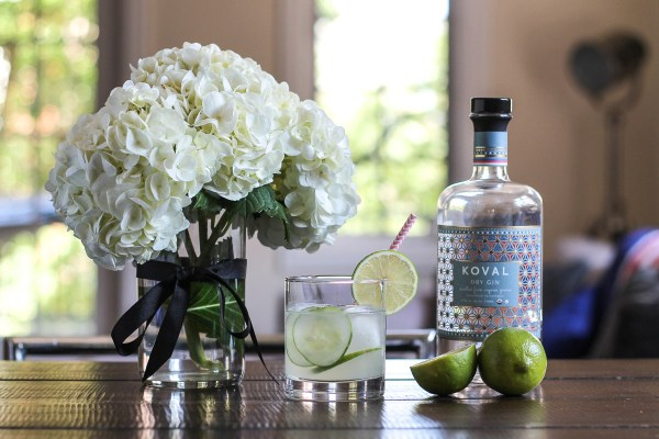 Cucumber Lime Gin and Tonic-2