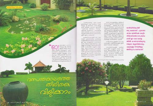 Medium Of Land Images Landscaping