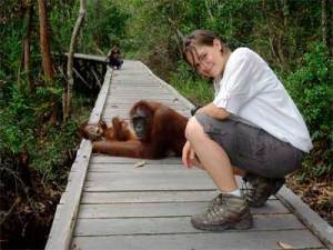 Janie Dubman hangs out with Indonesian orangutans on the island of Borneo
