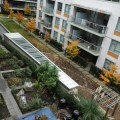 Community rooftop garden at a building in Olympic Village. Photo by Anne-Laurence Godefroy