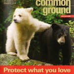 Common Ground, un magazine engagé pour l'environnement. Photo par Common Ground