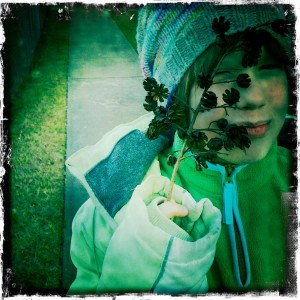 The Storyteller finds seed pods