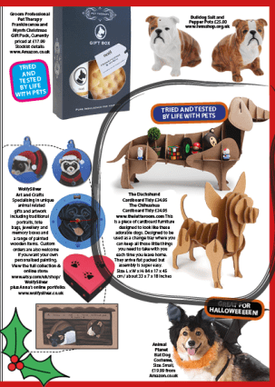 Christmas shopping pages p.22-01