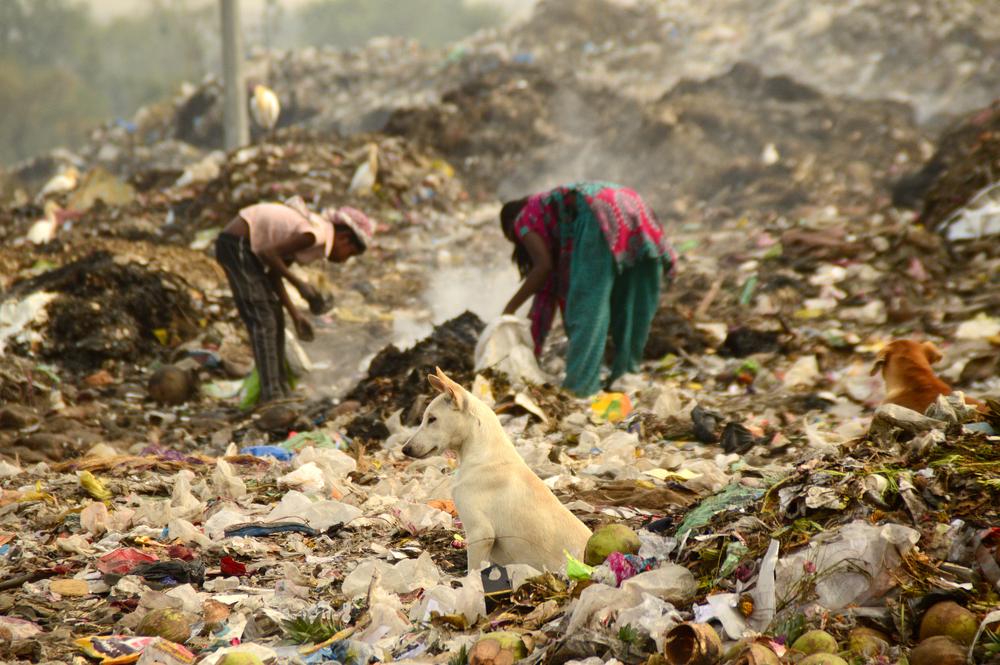 India bans disposable plastic in its capital Delhi