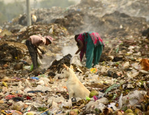India bans disposable plastic in its capital Delhi