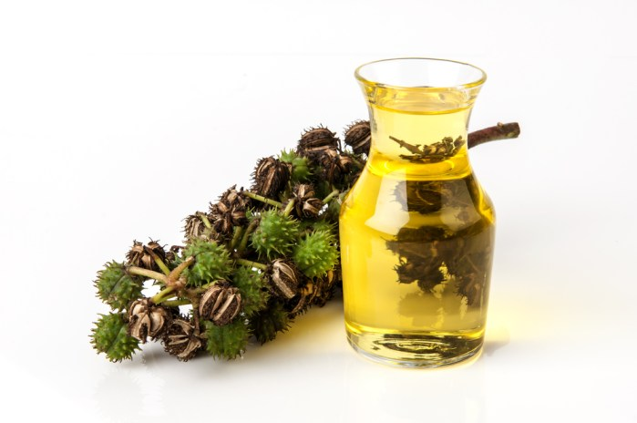 castor oil is healthy for your eyelashes