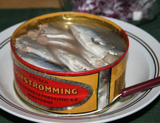 sour herring, a fermented fish from Sweden known as 'surstromming' - wikimedia Wrote