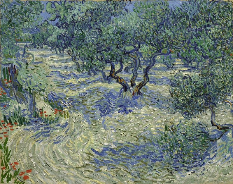 Grasshoped found in Vincent Van Gogh famous painting olive trees