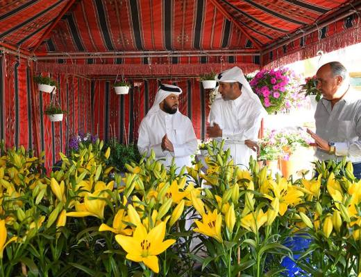 Qatar Flower Festival is opening at a new winter market each week