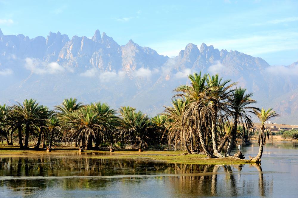 Small oasis in Socotra Island, Yemen