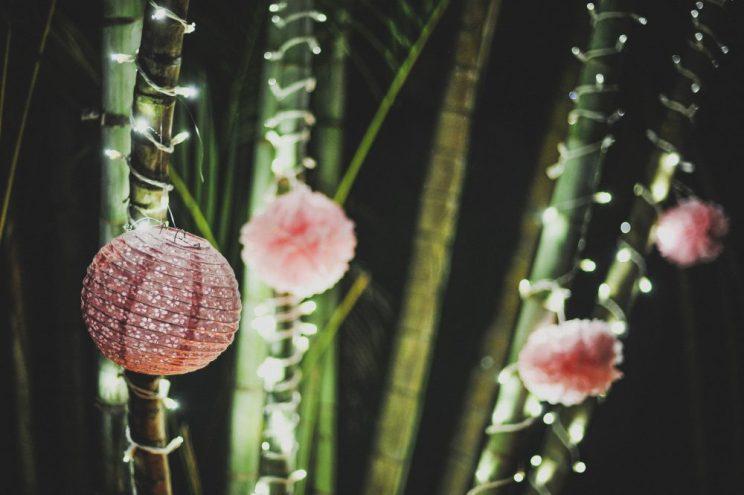 Bambuluces