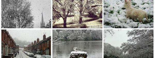 snowcollage
