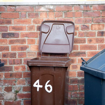 brown bins